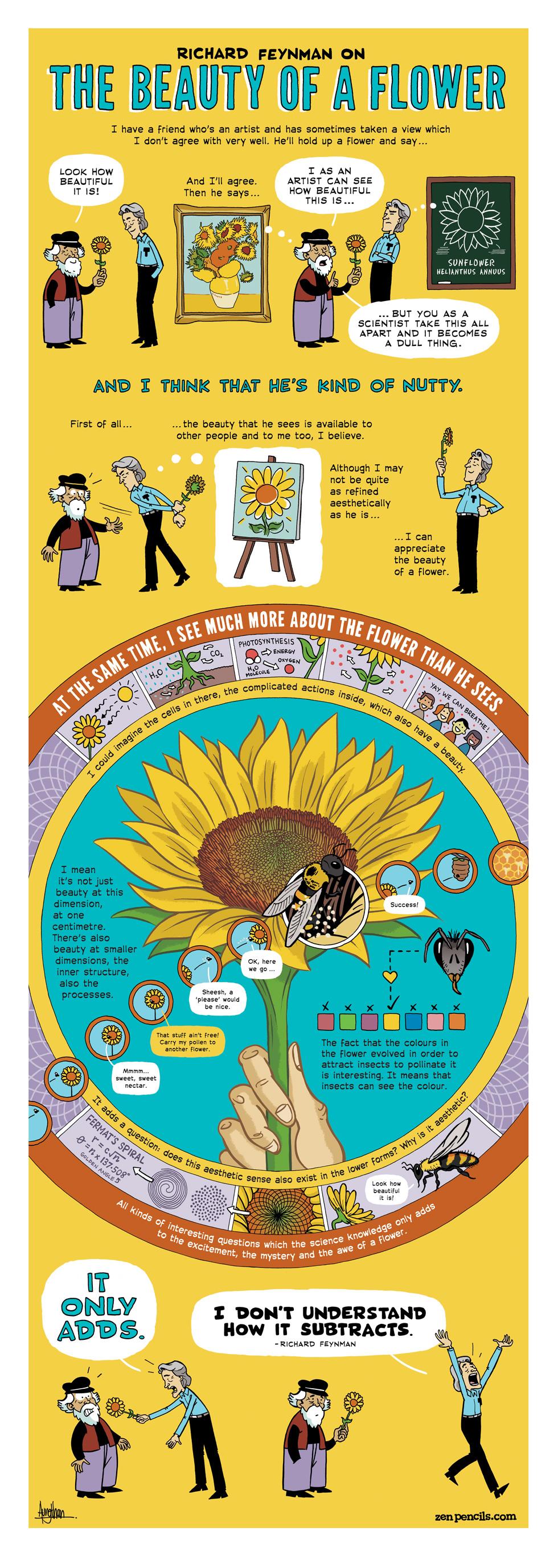 Comic de Zen Pencils con la Oda a una flor de Richard Feynman